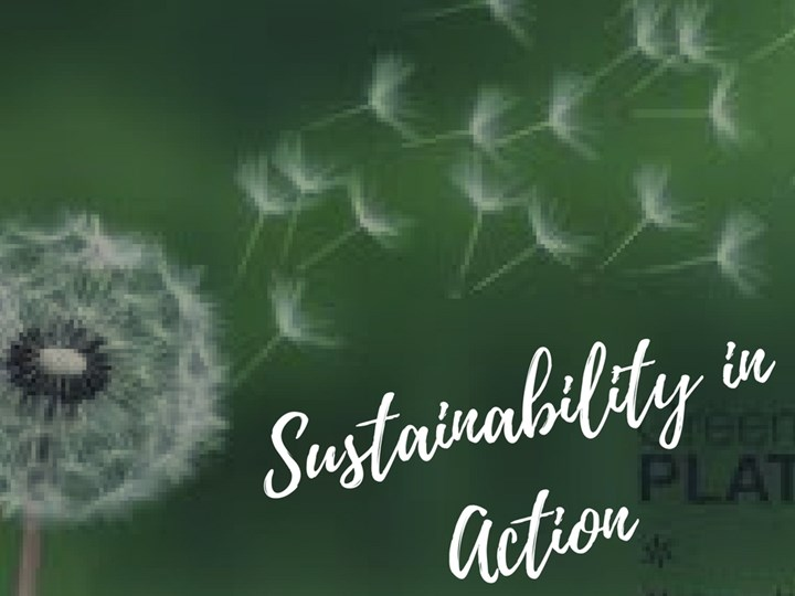 Sustainability in Action - Masterclass for SMEs