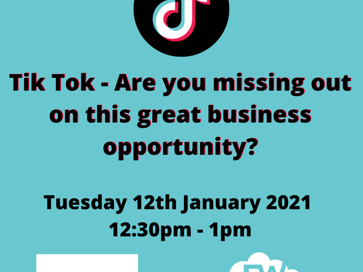 Tik Tok - Are you missing out on this great business opportunity?